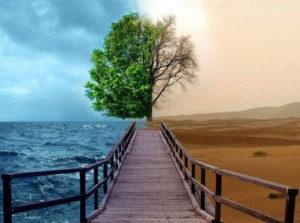 Зачем нужны увлажнители воздуха
